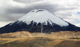 Lauca nationalpark, Chile, Sydamerika Arkivfoton