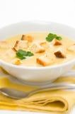 Lauch-, Kartoffel- und Selleriesuppe Lizenzfreies Stockbild