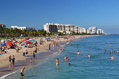 Lauderdale vid strandshorelinen Arkivbild