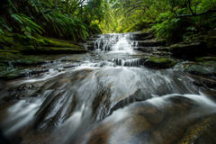 Lauera cascade in Blue mountains. Royalty Free Stock Photography