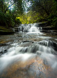 Lauera cascade in Blue mountains. Stock Images