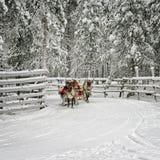 Laufen auf den Renschlitten in Rovaniemi Lizenzfreie Stockfotos