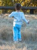 Laufen mit Pferden Stockfotos