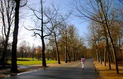 Laufen in Park Stockbilder