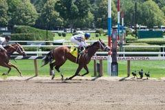 Laufen von Aktion von der Königin des amerikanischen Rennens Trac Stockfoto