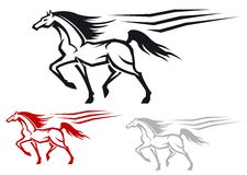 Laufen von Stallion Lizenzfreie Stockfotos
