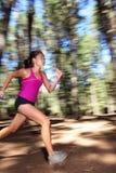 Laufen in Wald mit Drehzahl Lizenzfreie Stockfotografie
