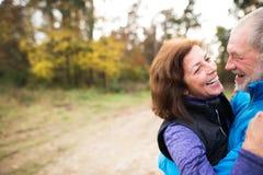 Laufende Außenseite der schönen älteren Paare im sonnigen Herbstwald Stockbild