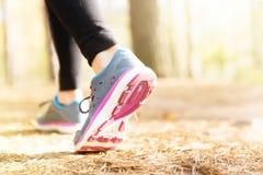 Laufende Beine der Frau im Sonnenuntergangwald Stockbilder