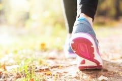 Laufende Beine der Frau im Sonnenuntergangwald Stockfotografie