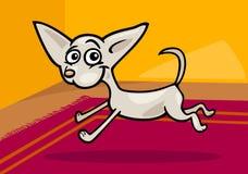 Laufende Chihuahuakarikaturabbildung Lizenzfreies Stockbild