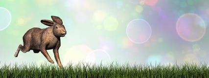 Laufende Hasen - 3D übertragen Lizenzfreies Stockbild