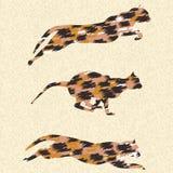Laufende Katzen Stockbild