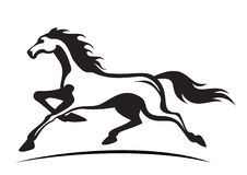 Laufender Stallion Lizenzfreies Stockfoto