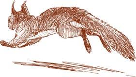 Laufendes Eichhörnchen Lizenzfreies Stockbild