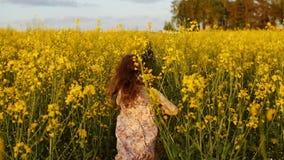 Laufendes Kreuz des Mädchens das Feld bei Sonnenuntergang Langsame Bewegung stock footage