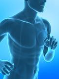 Laufendes Mannkonzept des Röntgenstrahls Lizenzfreies Stockfoto