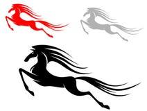 Laufendes Mustangpferd Stockfotos