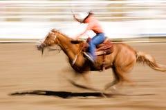 Laufendes Pferd Lizenzfreies Stockbild