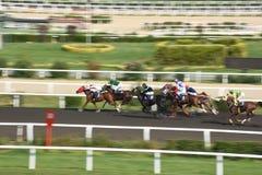 Laufendes Pferdein konkurrenz Bewegung Pan lizenzfreies stockbild