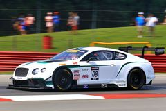 Laufendes Team Bentley Continentals Lizenzfreie Stockfotografie
