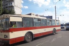 Laufkatzen-Bus Lizenzfreies Stockfoto