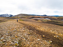 Laugavegur trail in Iceland Royalty Free Stock Photography