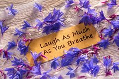 Laugh As Much As You Breathe. In looking memo on white wood with beautiful blue flowers around Stock Photography