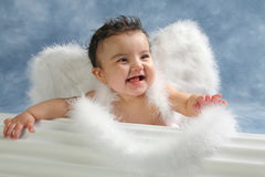 Laughing angel Stock Photography