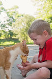 Young child laughing at cat eating his ice cream cone Royalty Free Stock Photo