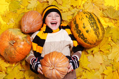 Laughing boy on yellow leaves Stock Image