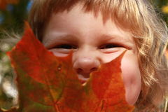 The laughing child hold red leaf, autumnal portrait Stock Photo