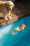 Laughing child in water pool and dog Royalty Free Stock Photos