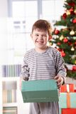 Laughing cute boy at christmas Stock Images