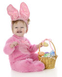 Laughing Easter Bunny. An adorable baby Easter bunny laughing as she puts a colored egg in her Easter basket.  On a white background Stock Photography