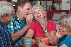 Laughing Elderly Couple with Friends. European men whispering to laughing senior women with friends Royalty Free Stock Photo