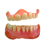 Laughing false teeth Royalty Free Stock Photo