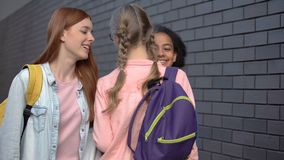 Laughing female teenagers pushing classmate, emotional and psychological abuse. Stock footage stock video footage