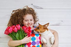 Laughing girl hugging a puppy and holding red tulips. Royalty Free Stock Photography