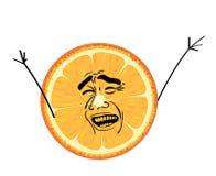 Free Laughing Internet Meme Illustration Of Orange Cut Royalty Free Stock Image - 197400906