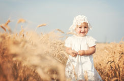 Laughing kid in sunny wheat  field Royalty Free Stock Photos