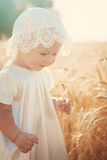 Laughing kid in sunny wheat  field Royalty Free Stock Photo