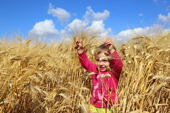 Laughing kid in wheat field Royalty Free Stock Photography
