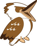 Laughing Kookaburra Cartoon Royalty Free Stock Photography