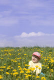 Laughing little boy on the field Royalty Free Stock Photos