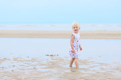 Laughing little girl plays on the beach Stock Image