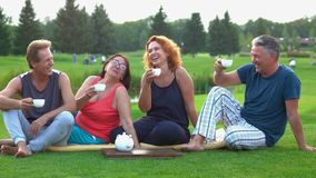 Laughing mature people outdoors. stock footage