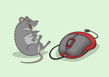 The laughing mouse. Royalty Free Stock Photos