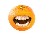 Laughing orange Stock Images