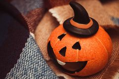 Laughing pumpkins for Halloween on a warm cozy blanket Halloween symbol royalty free stock images